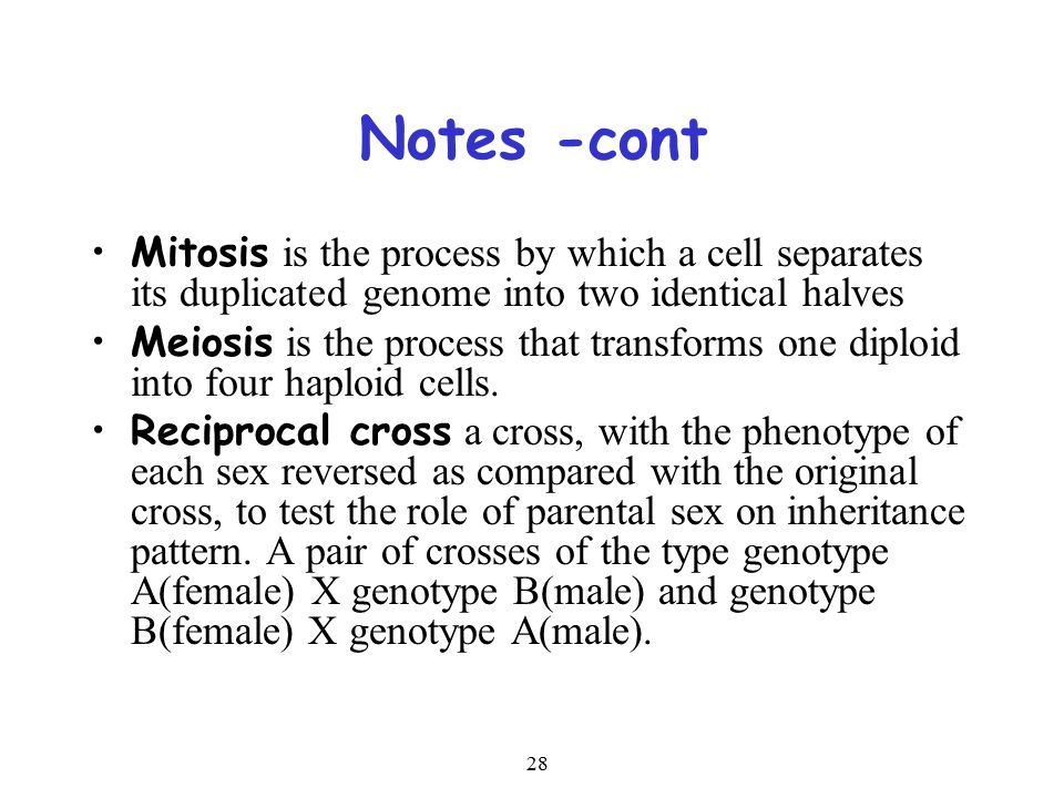 28 Notes -cont Mitosis is the process by which a cell separates its duplicated genome into two identical halves Meiosis is the process that transforms