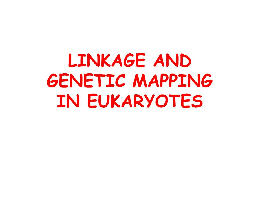 LINKAGE AND GENETIC MAPPING IN EUKARYOTES