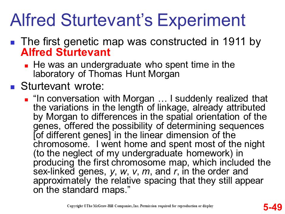 The first genetic map was constructed in 1911 by Alfred Sturtevant He was an undergraduate who spent time in the laboratory of Thomas Hunt Morgan Stur