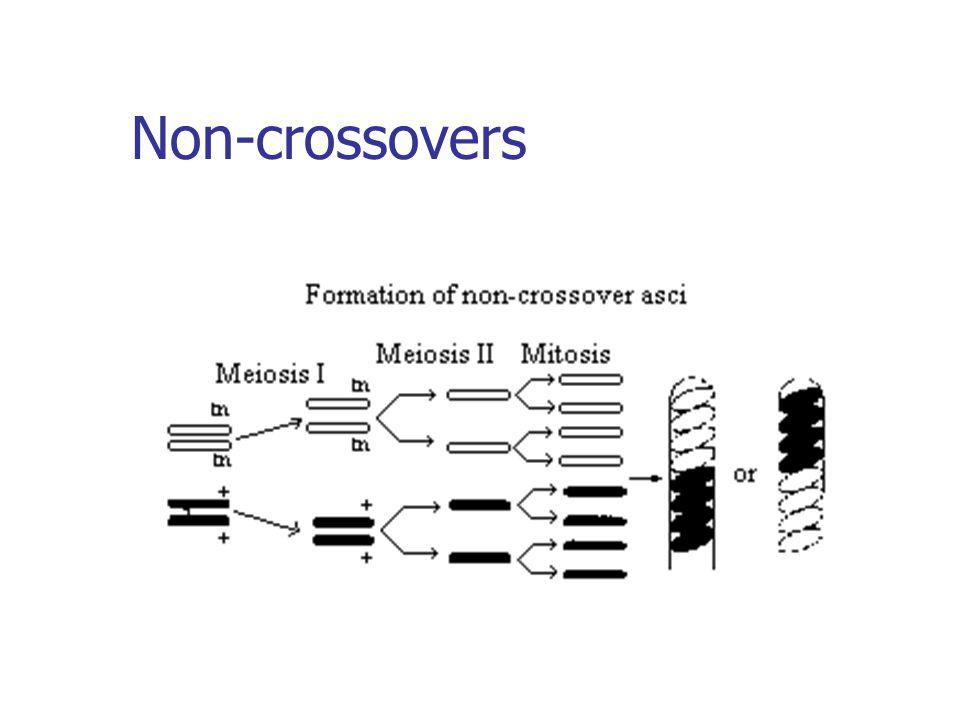 Non-crossovers