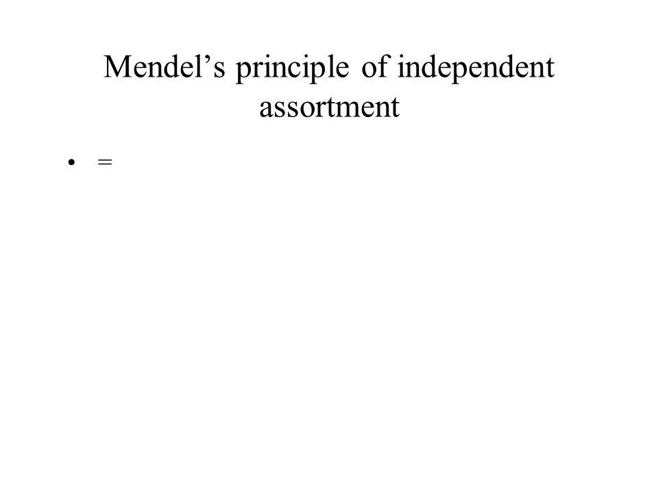 Mendel's principle of independent assortment =