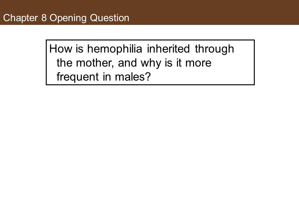 Chapter 8 Opening Question How is hemophilia inherited through the mother, and why is it more frequent in males