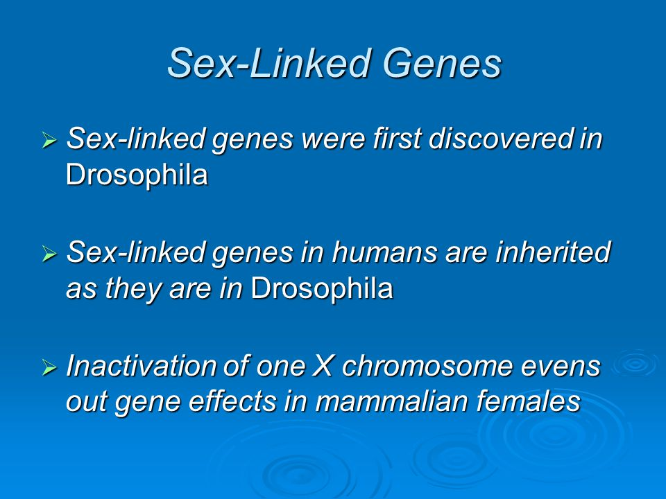 Sex-Linked Genes  Sex-linked genes were first discovered in Drosophila  Sex-linked genes in humans are inherited as they are in Drosophila  Inactiv