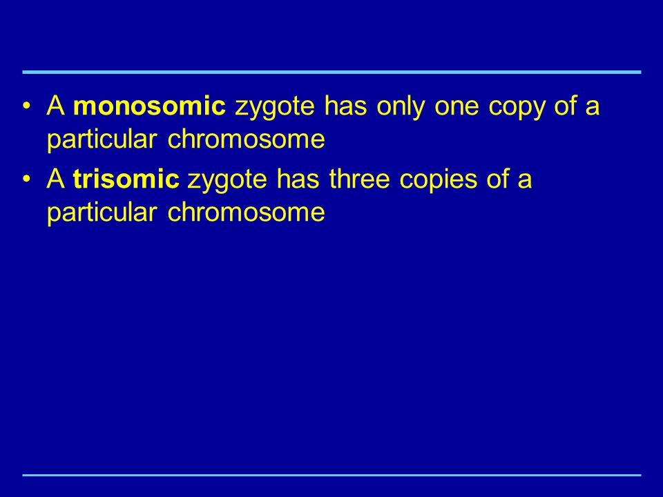 A monosomic zygote has only one copy of a particular chromosome A trisomic zygote has three copies of a particular chromosome