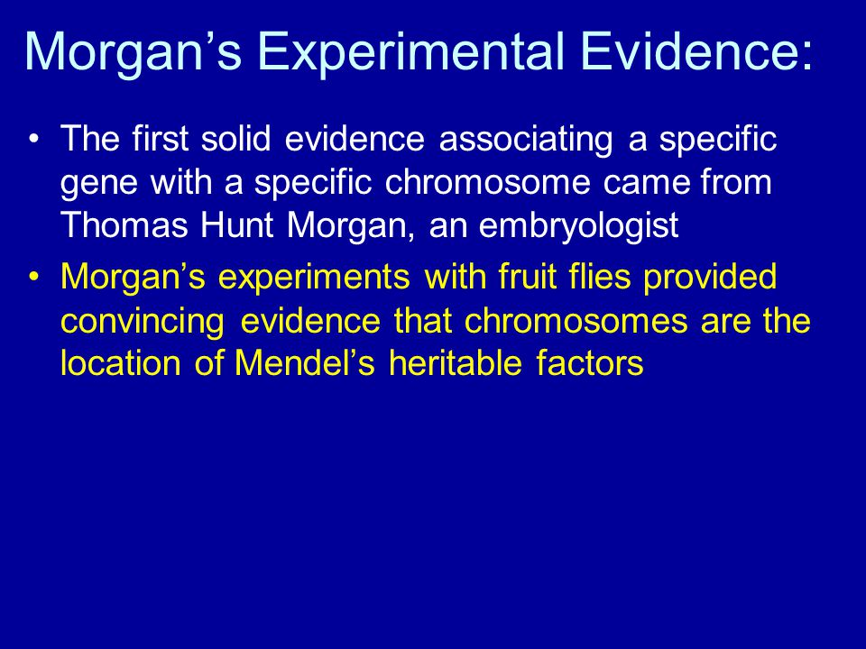 Morgan's Experimental Evidence: The first solid evidence associating a specific gene with a specific chromosome came from Thomas Hunt Morgan, an embry