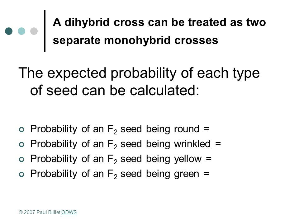 A dihybrid cross can be treated as two separate monohybrid crosses The expected probability of each type of seed can be calculated: Probability of an F 2 seed being round = Probability of an F 2 seed being wrinkled = Probability of an F 2 seed being yellow = Probability of an F 2 seed being green = © 2007 Paul Billiet ODWSODWS