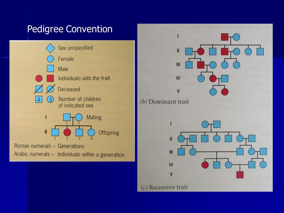 Pedigree Convention