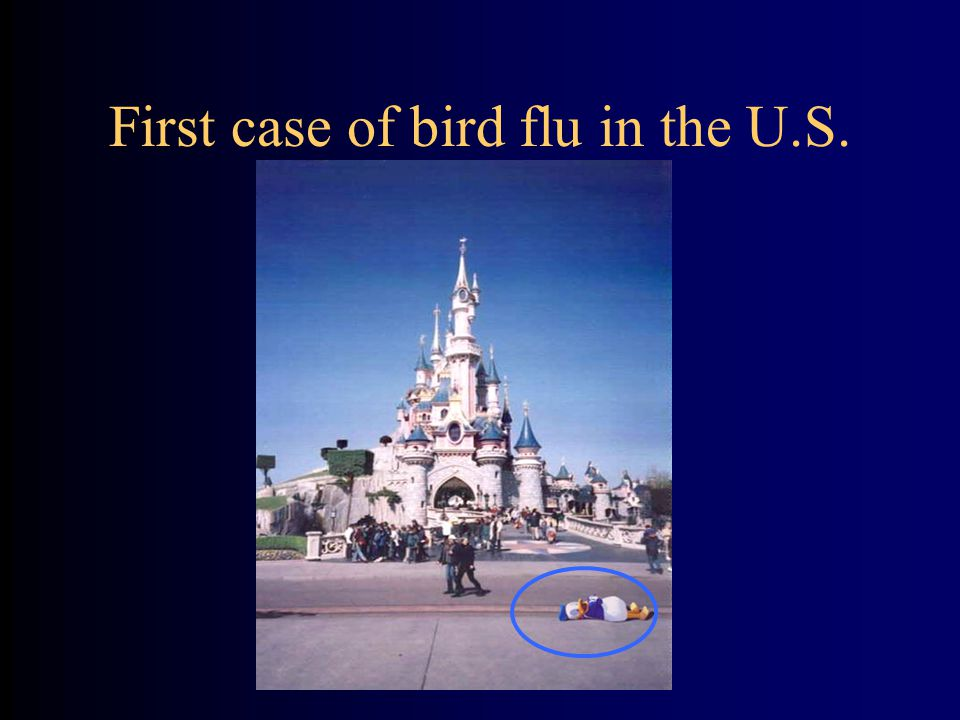 First case of bird flu in the U.S.
