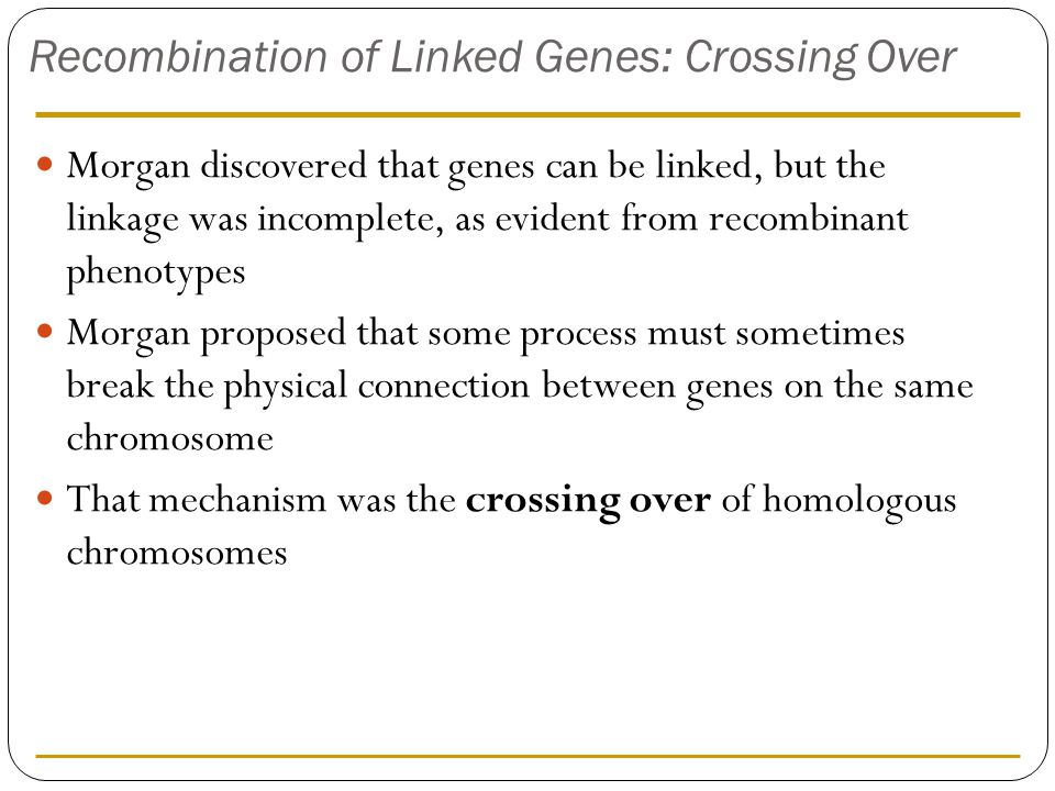 Recombination of Linked Genes: Crossing Over Morgan discovered that genes can be linked, but the linkage was incomplete, as evident from recombinant p