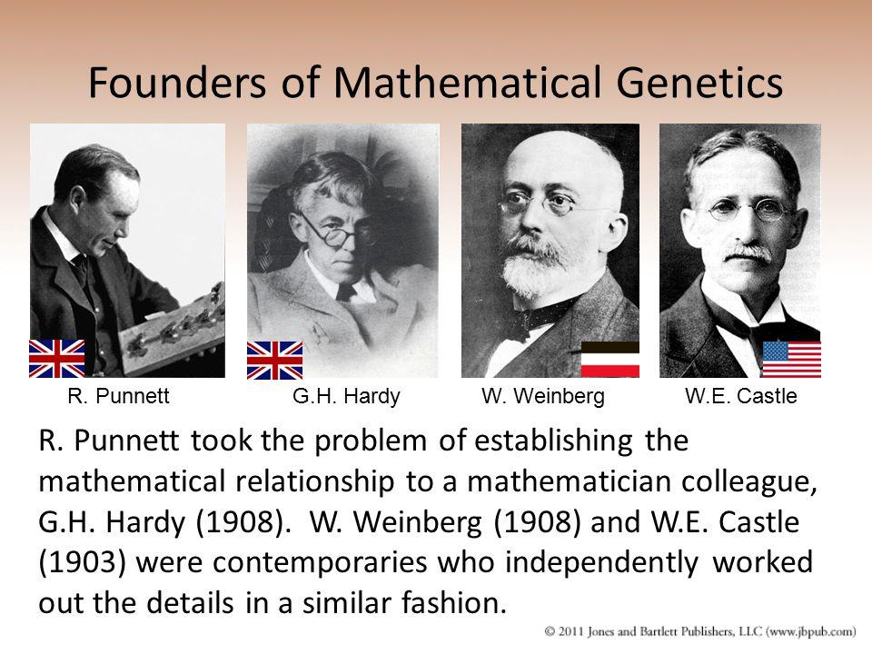 Founders of Mathematical Genetics R. PunnettG.H. HardyW.E. CastleW. Weinberg R. Punnett took the problem of establishing the mathematical relationship