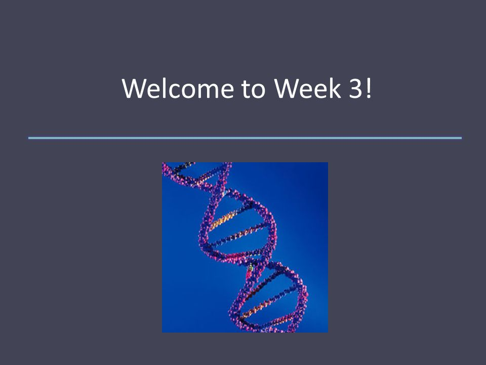 Welcome to Week 3!