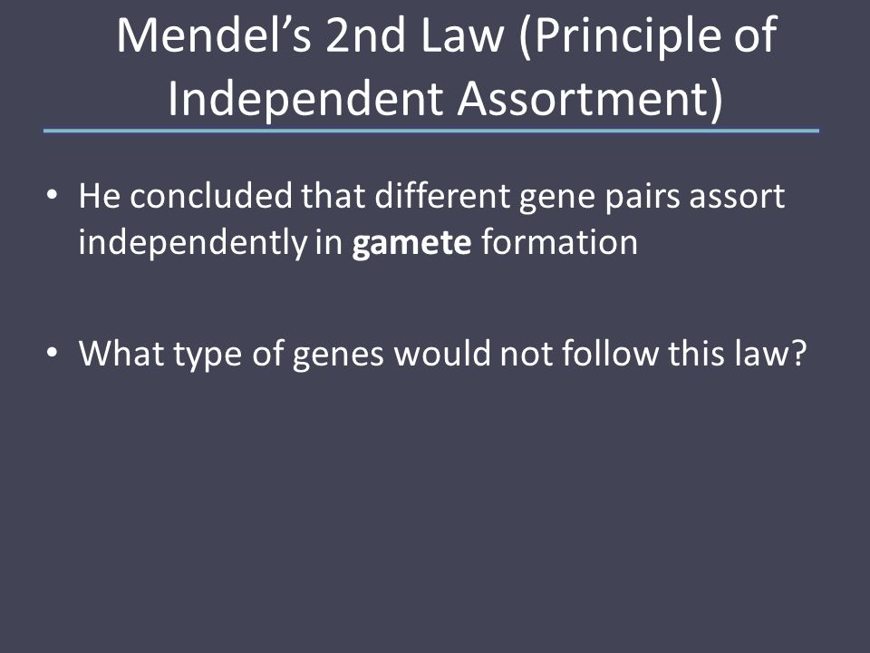 Mendel's 2nd Law (Principle of Independent Assortment) He concluded that different gene pairs assort independently in gamete formation What type of genes would not follow this law