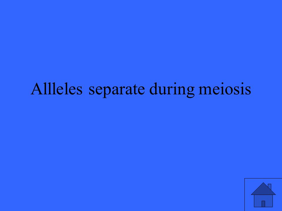 Allleles separate during meiosis