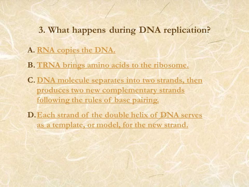 3. What happens during DNA replication. A.RNA copies the DNA.RNA copies the DNA.