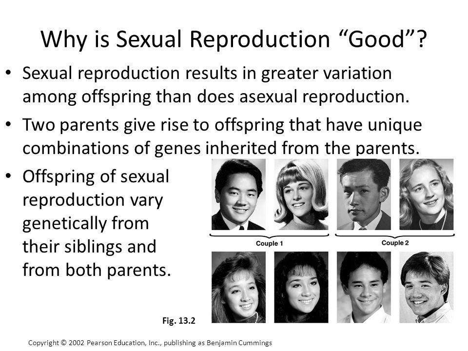 "Why is Sexual Reproduction ""Good""? Sexual reproduction results in greater variation among offspring than does asexual reproduction. Two parents give r"