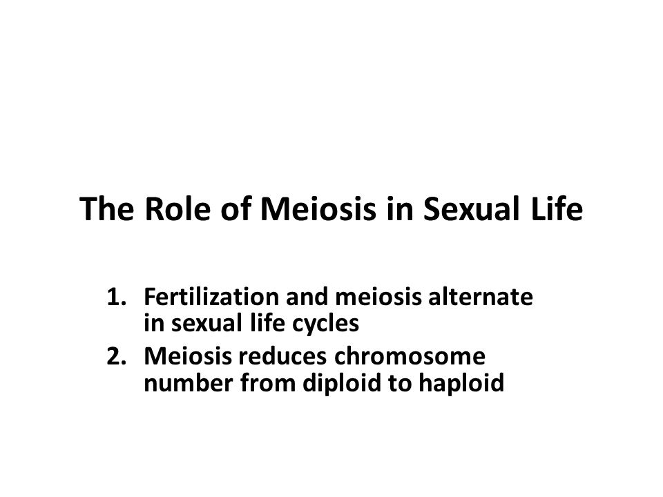 The Role of Meiosis in Sexual Life 1.Fertilization and meiosis alternate in sexual life cycles 2.Meiosis reduces chromosome number from diploid to haploid