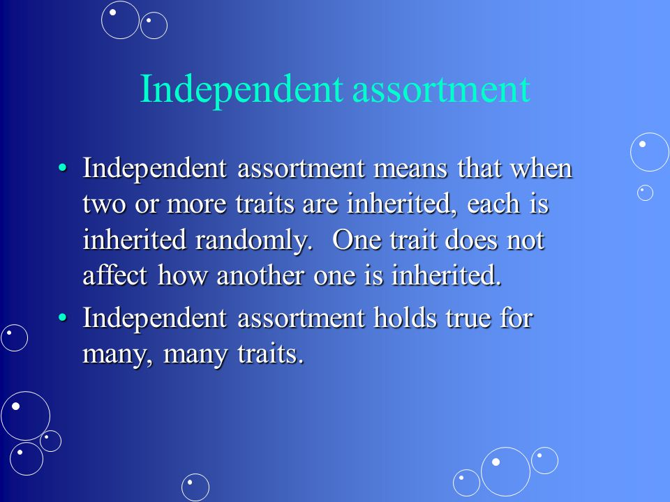 Independent assortment Independent assortment means that when two or more traits are inherited, each is inherited randomly.
