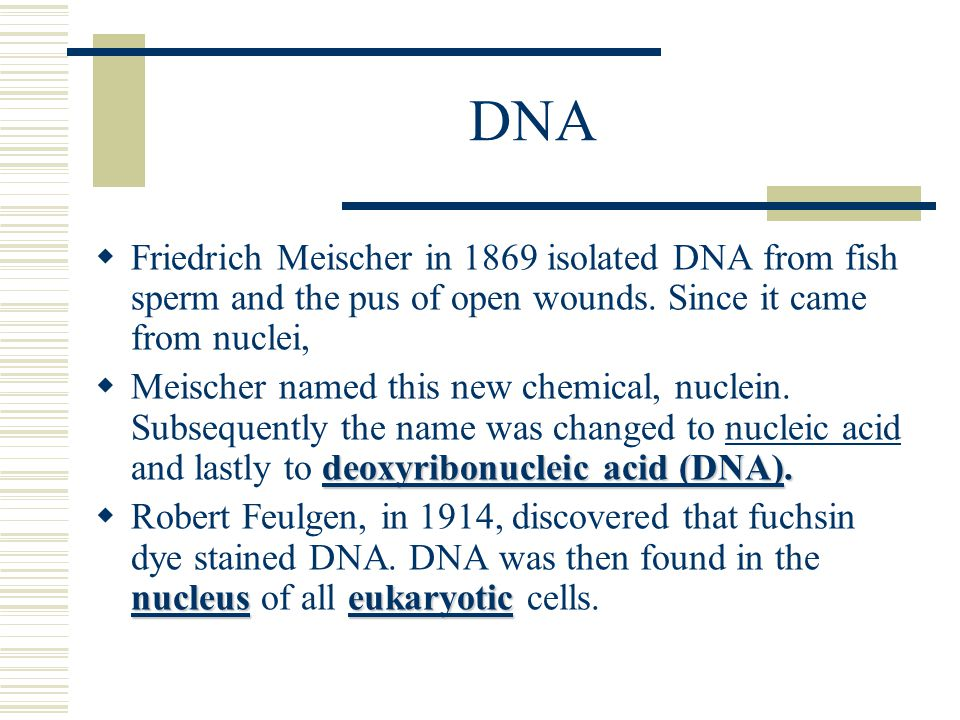 DNA  Friedrich Meischer in 1869 isolated DNA from fish sperm and the pus of open wounds. Since it came from nuclei, deoxyribonucleic acid (DNA)deoxyr
