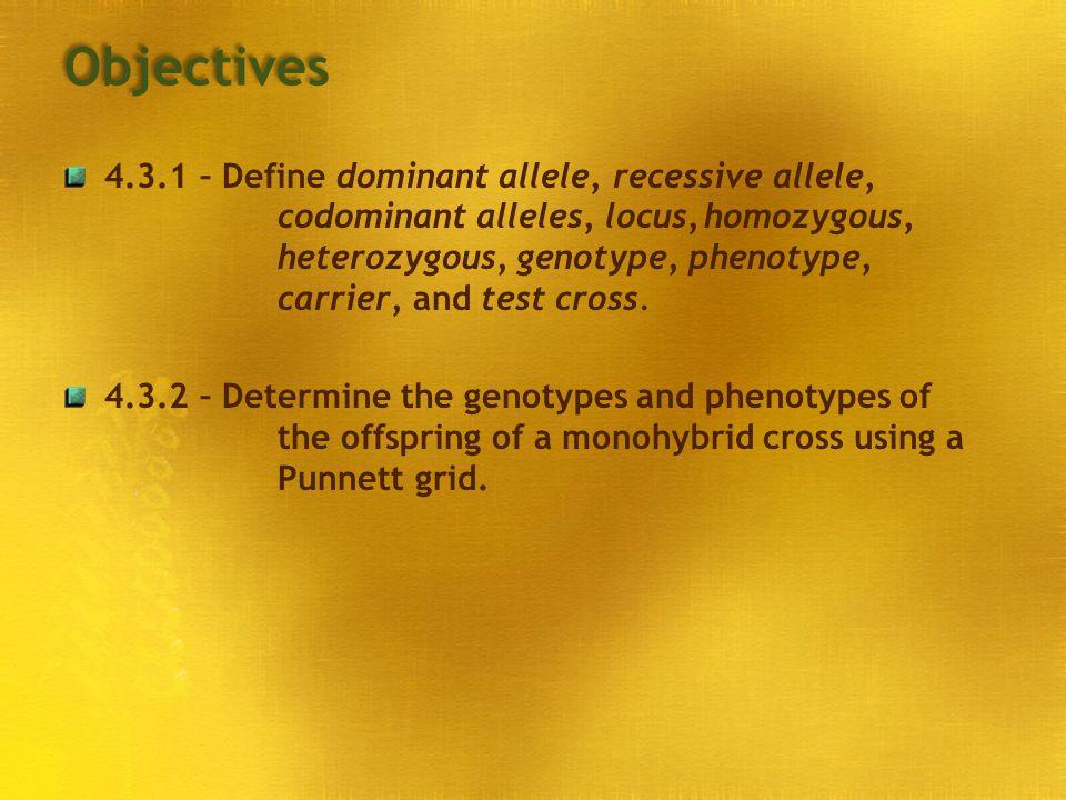 Objectives 4.3.1 – Define dominant allele, recessive allele, codominant alleles, locus,homozygous, heterozygous, genotype, phenotype, carrier, and tes