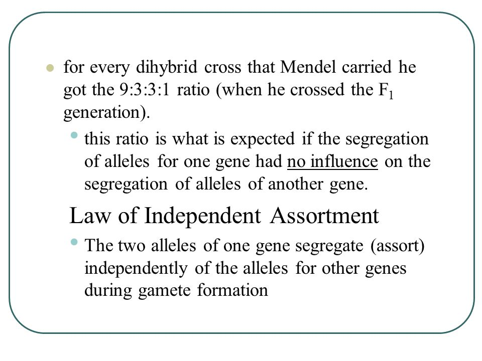 for every dihybrid cross that Mendel carried he got the 9:3:3:1 ratio (when he crossed the F 1 generation).