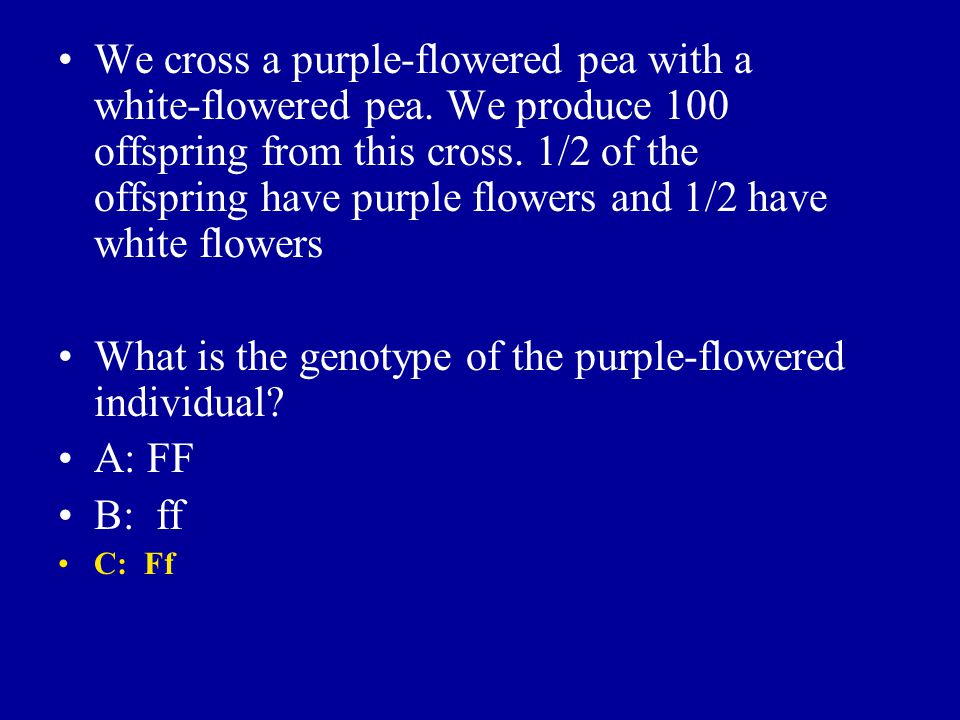 We cross a purple-flowered pea with a white-flowered pea. We produce 100 offspring from this cross. 1/2 of the offspring have purple flowers and 1/2 h