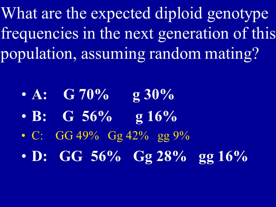 What are the expected diploid genotype frequencies in the next generation of this population, assuming random mating? A: G 70% g 30% B: G 56% g 16% C: