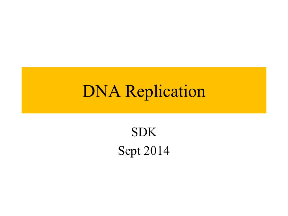 DNA Replication SDK Sept 2014