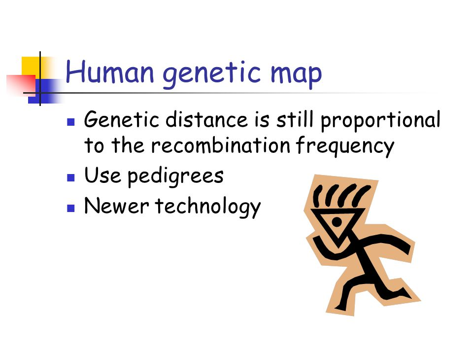 Human genetic map Genetic distance is still proportional to the recombination frequency Use pedigrees Newer technology
