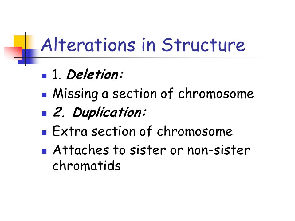 Alterations in Structure 1. Deletion: Missing a section of chromosome 2. Duplication: Extra section of chromosome Attaches to sister or non-sister chr