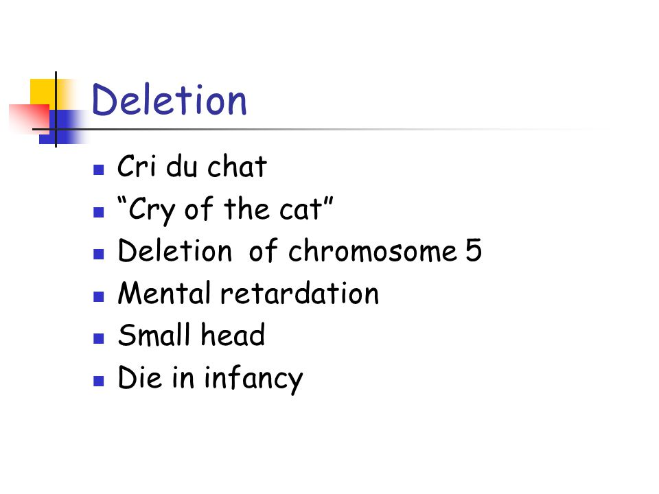 "Deletion Cri du chat ""Cry of the cat"" Deletion of chromosome 5 Mental retardation Small head Die in infancy"