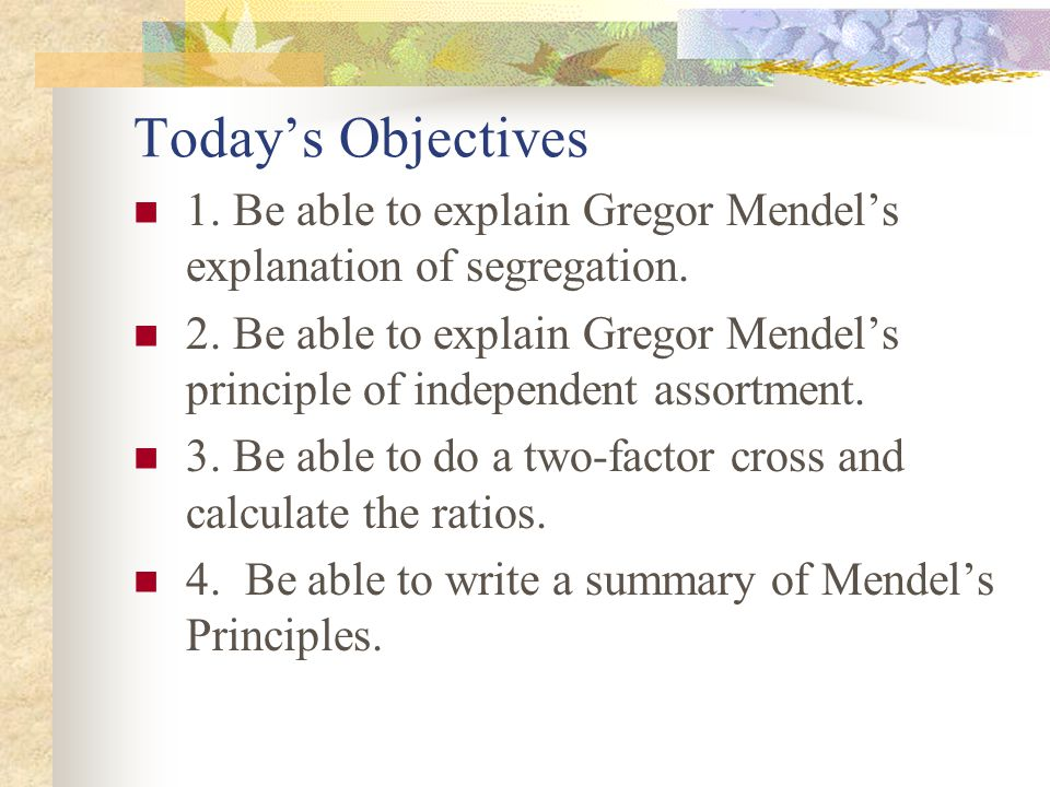 Today's Objectives 1. Be able to explain Gregor Mendel's explanation of segregation. 2. Be able to explain Gregor Mendel's principle of independent as
