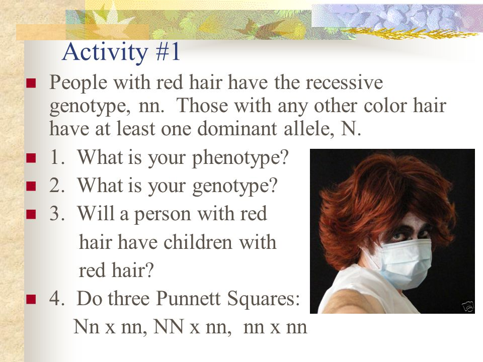 Activity #1 People with red hair have the recessive genotype, nn. Those with any other color hair have at least one dominant allele, N. 1. What is you