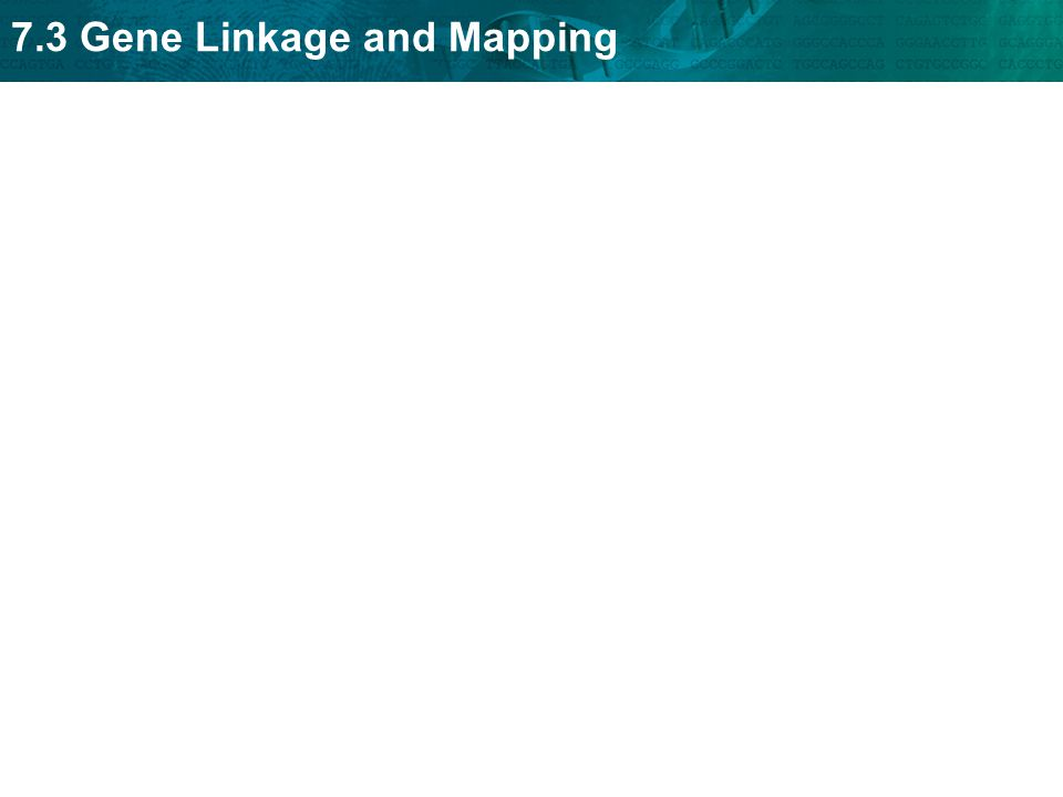 7.3 Gene Linkage and Mapping
