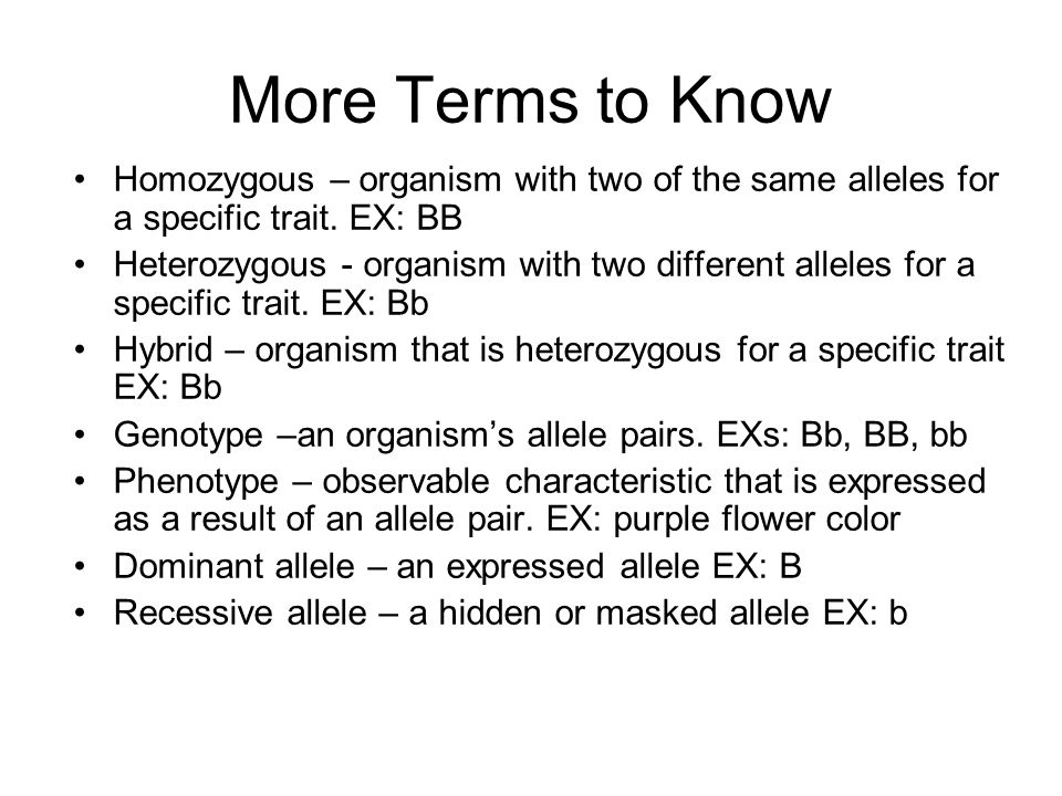 More Terms to Know Homozygous – organism with two of the same alleles for a specific trait. EX: BB Heterozygous - organism with two different alleles