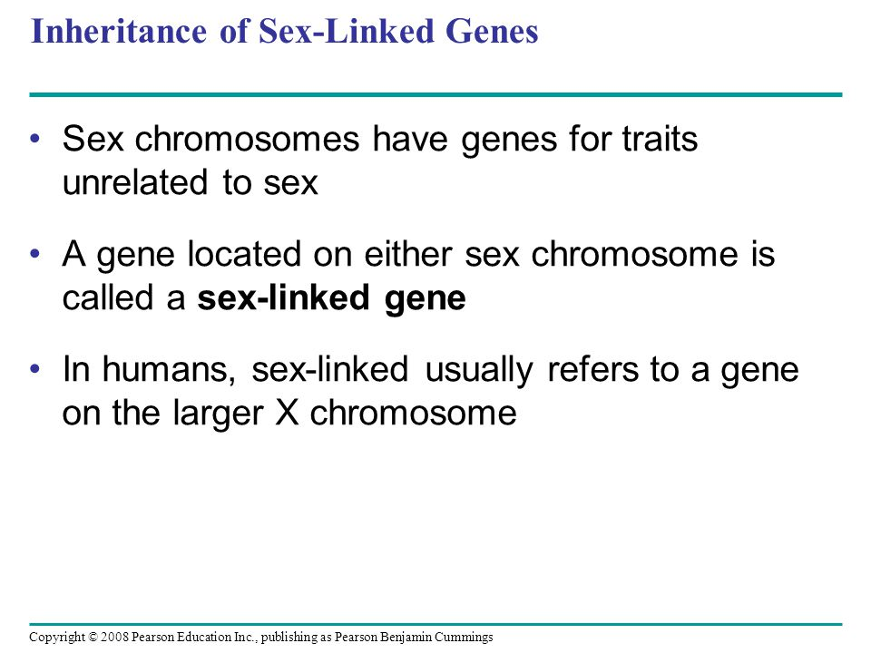 Inheritance of Sex-Linked Genes Sex chromosomes have genes for traits unrelated to sex A gene located on either sex chromosome is called a sex-linked gene In humans, sex-linked usually refers to a gene on the larger X chromosome Copyright © 2008 Pearson Education Inc., publishing as Pearson Benjamin Cummings