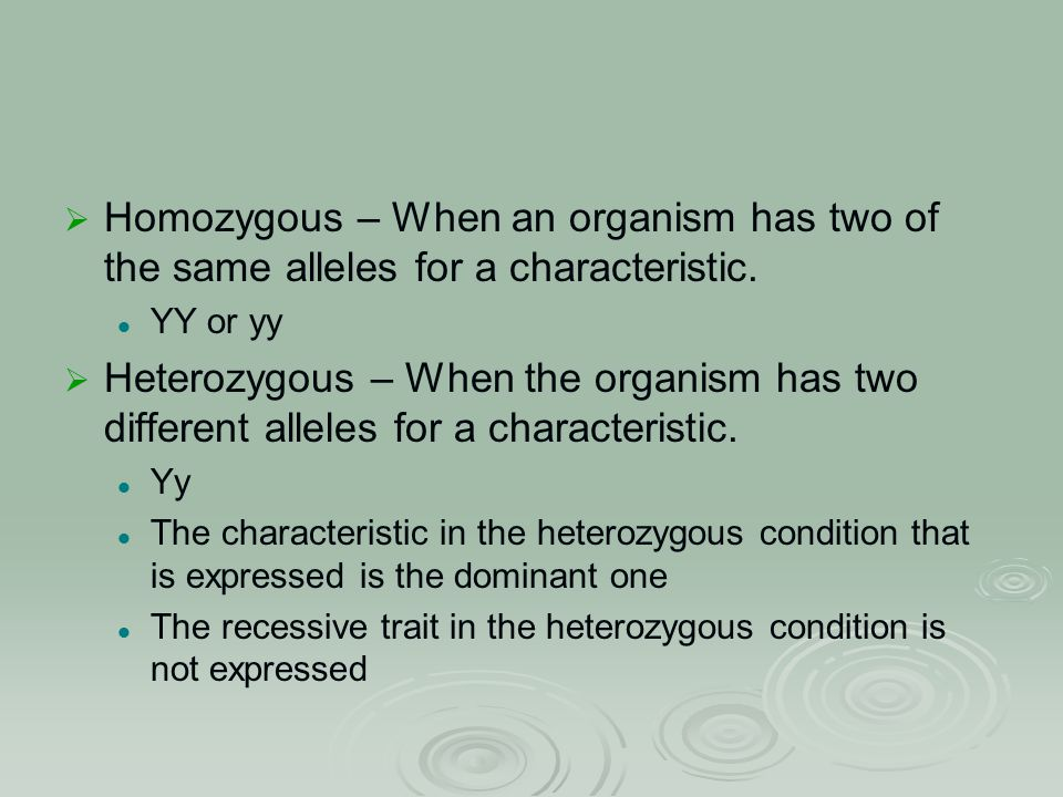  Homozygous – When an organism has two of the same alleles for a characteristic.