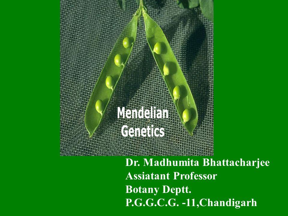 Dr. Madhumita Bhattacharjee Assiatant Professor Botany Deptt. P.G.G.C.G. -11,Chandigarh