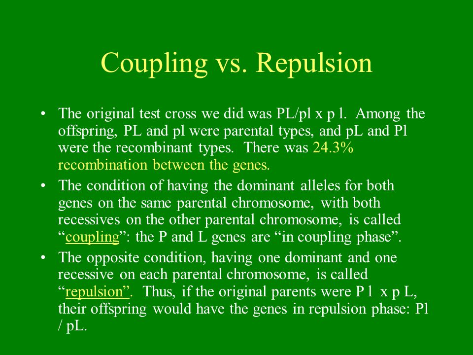 Coupling vs. Repulsion The original test cross we did was PL/pl x p l.