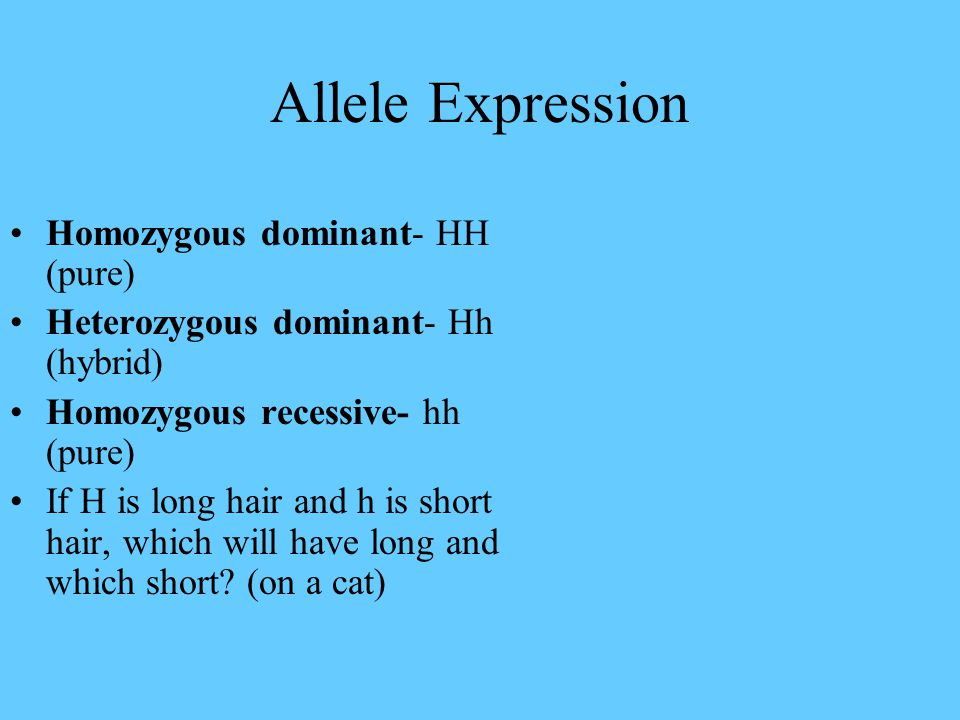 Allele Expression Homozygous dominant- HH (pure) Heterozygous dominant- Hh (hybrid) Homozygous recessive- hh (pure) If H is long hair and h is short h