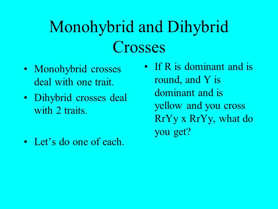 Monohybrid and Dihybrid Crosses Monohybrid crosses deal with one trait. Dihybrid crosses deal with 2 traits. Let's do one of each. If R is dominant an