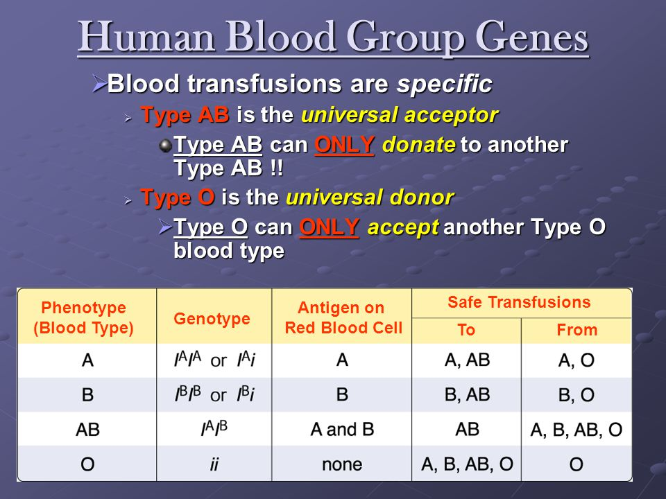 Type O Blood With two recessive alleles ii you have the Blood Type O Type O blood has a smooth surface and because of that it is a universal donor
