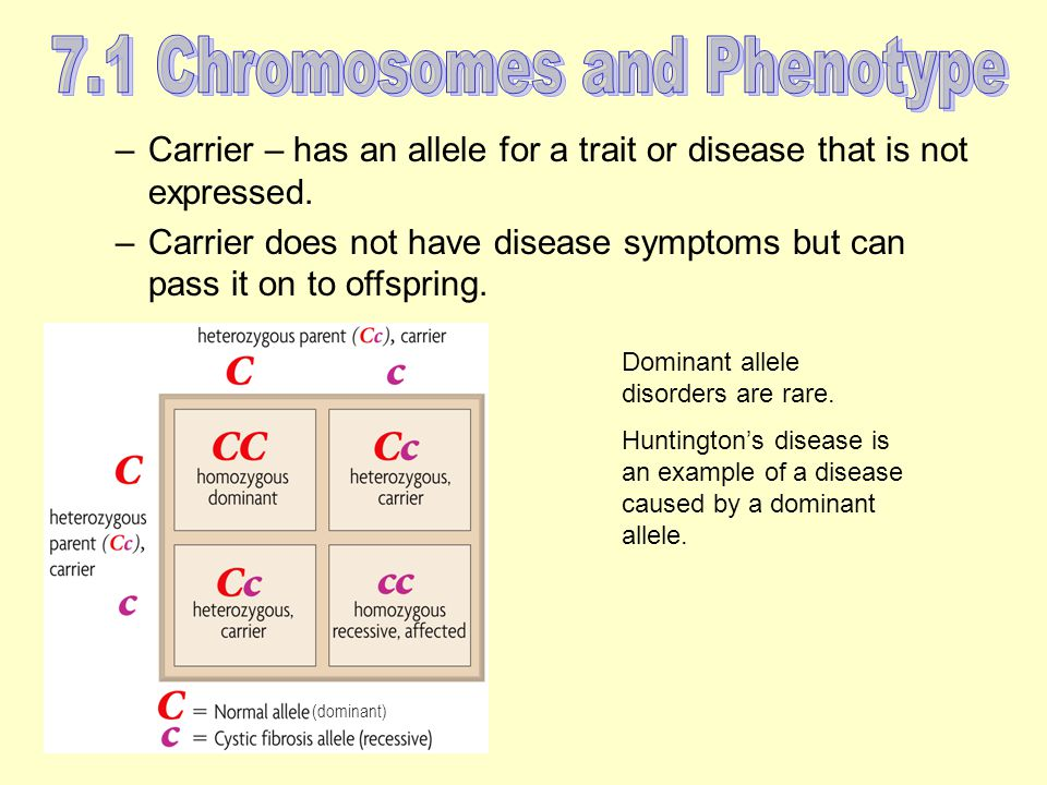 –Carrier – has an allele for a trait or disease that is not expressed.