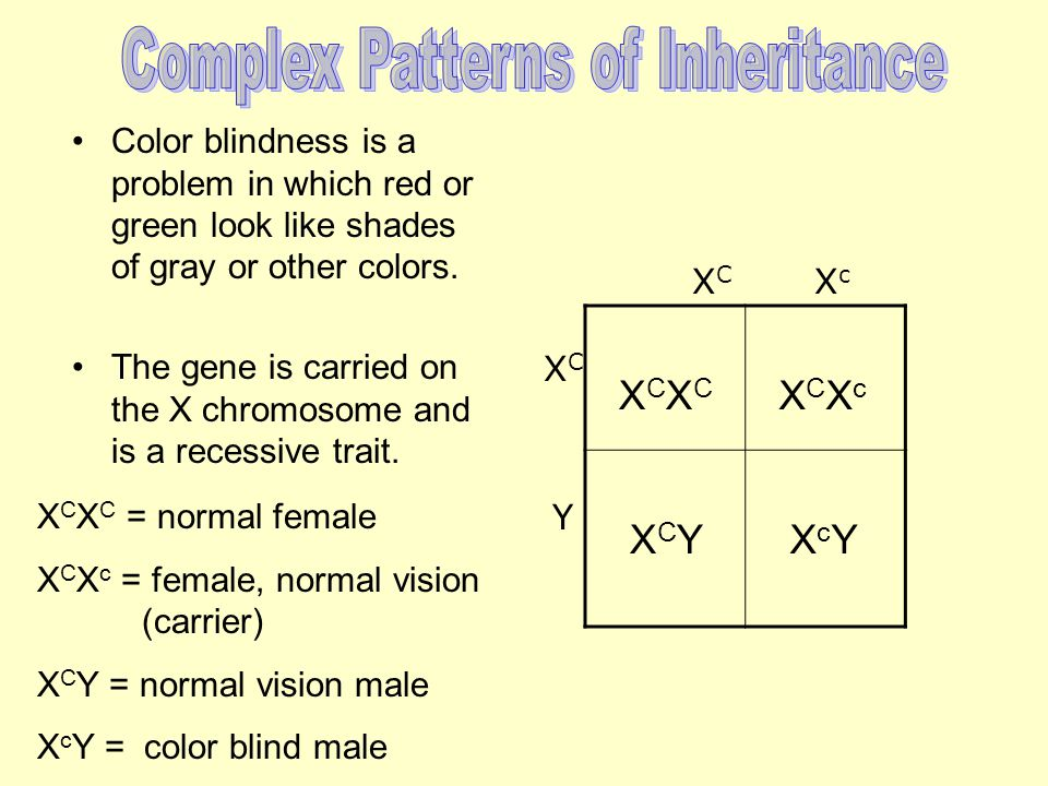 Color blindness is a problem in which red or green look like shades of gray or other colors.