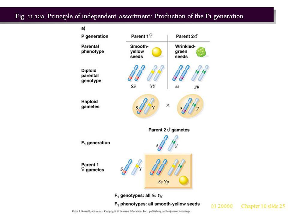 台大農藝系 遺傳學 601 20000 Chapter 10 slide 26 Fig.