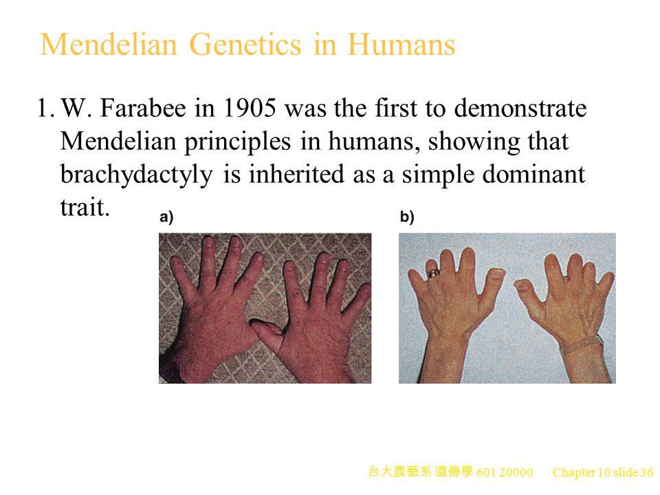 台大農藝系 遺傳學 601 20000 Chapter 10 slide 37 Pedigree Analysis 1.The study of the phenotypic records of a family over several generations is pedigree analysis.