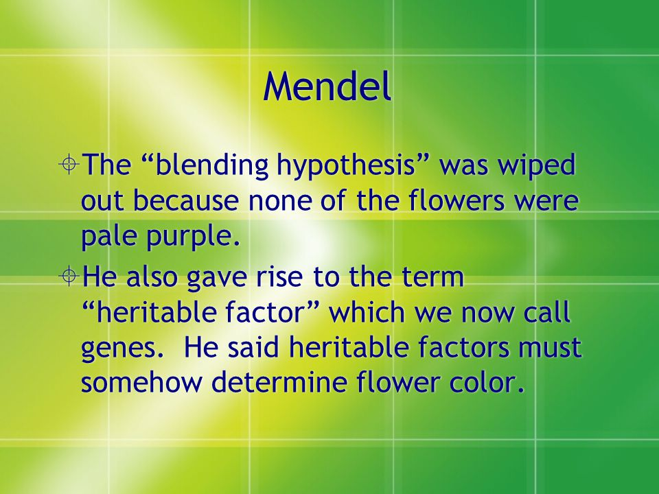 Mendel  The blending hypothesis was wiped out because none of the flowers were pale purple.