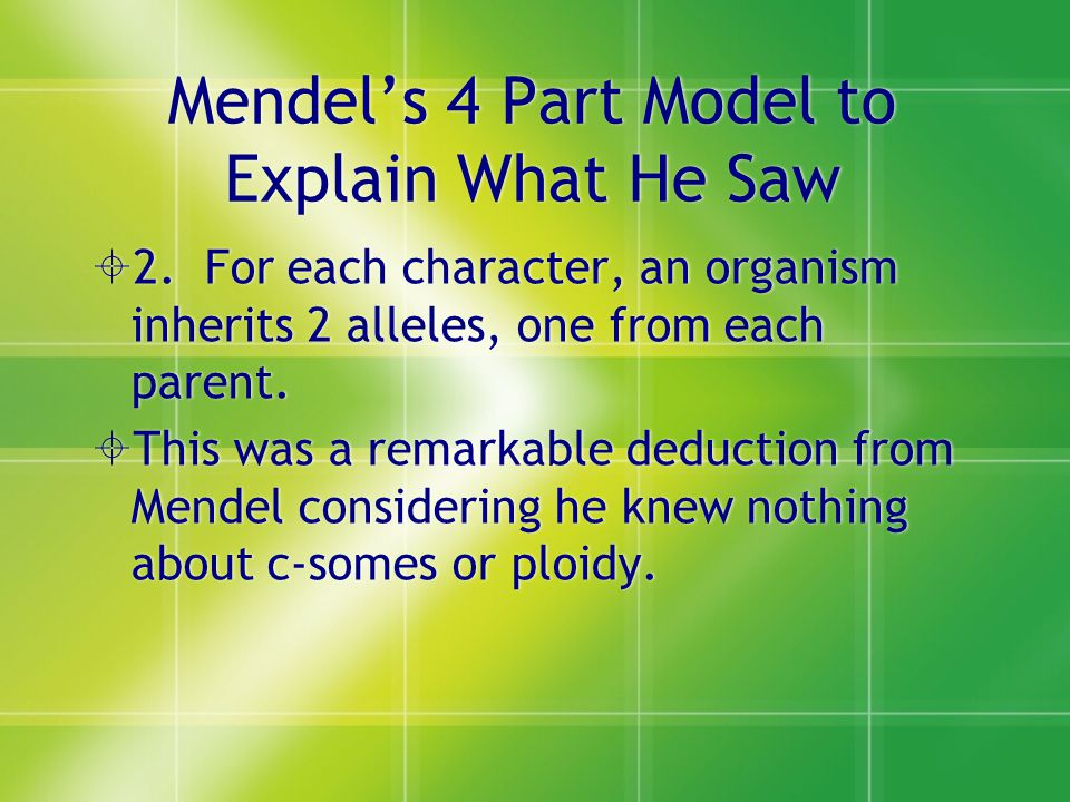 Mendel's 4 Part Model to Explain What He Saw  2.