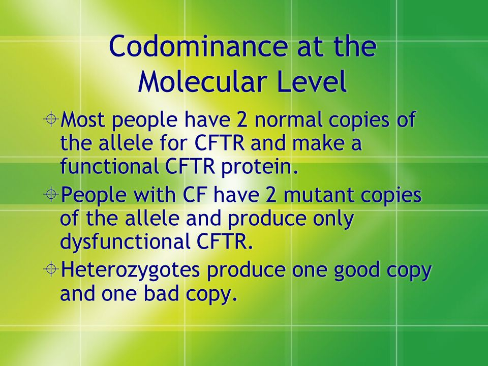Codominance at the Molecular Level  Most people have 2 normal copies of the allele for CFTR and make a functional CFTR protein.