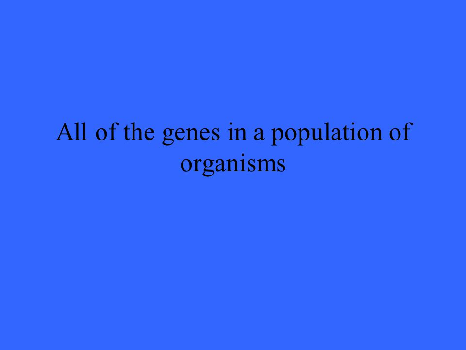 All of the genes in a population of organisms