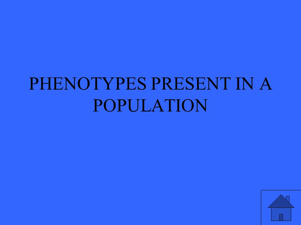 PHENOTYPES PRESENT IN A POPULATION